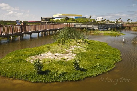 There is almost a half mile of boardwalk over salt and fresh-water marshes at the SPI World Birding Center.