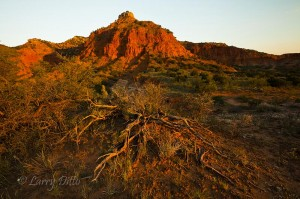 First light on Caprock Canyons State Park near Quitaque, Texas