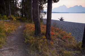 Path along the Jackson Lake shoreline with smokeyTetons at sunset.