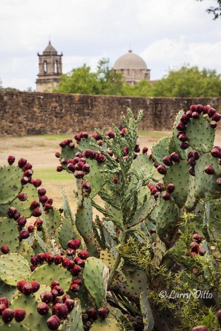 An afternoon at the historic missions of San Antonio was productive.