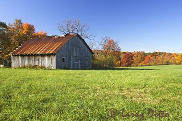 Arkansas_barn_3_larry_ditto