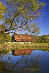 Barn_Larry_Ditto_X0Z2490