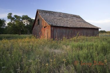 Barn_at_Sunset_larry_Ditto