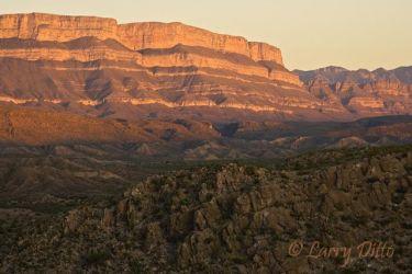 Big Bend National Park_X0Z1783