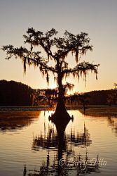 Caddo_Lake_Larry_Ditto_MG_2563
