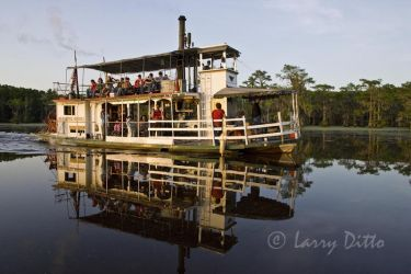 Touring Caddo Lake, Texas on paddle-wheel boat, Graceful Ghost