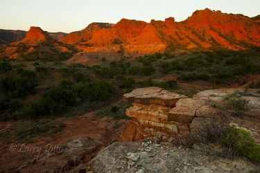 Caprock_Canyons_State_Park_MG_0632