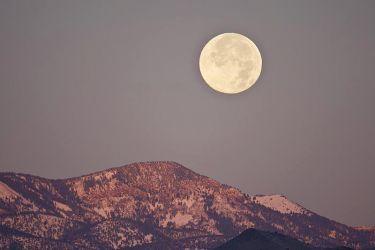 Full_Moon_Larry_Ditto_70K9227