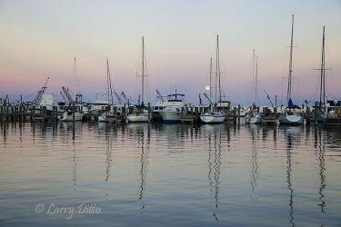Fulton Harbor, December