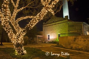 Hidalgo_Christmas_Lights_Larry_Ditto_X0Z9534