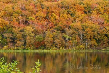 Lake Mineral Wells State Park in autumn