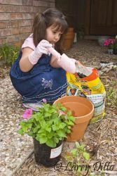 Gardening_MG_4949