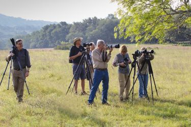 Block Creek Natural Area Photo Tour group focused on owls.