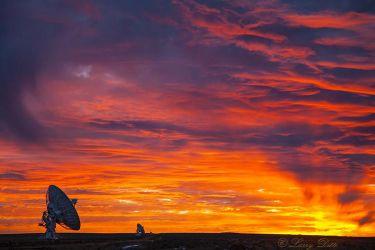 Radio Telescopes at VLA, New Mexico