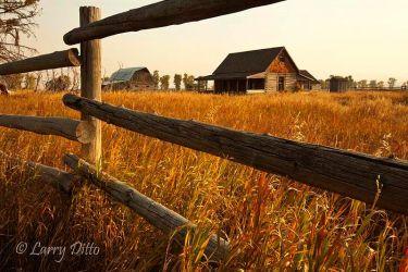 Rail_Fence_and_Farm_MG_1403