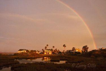 Rainbow_Larry_Ditto_MG_9033