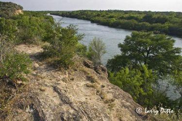 Rio Grande below Falcon Dam in s. Texas.