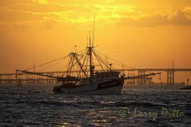 Shrimp_Boat_2_larry_ditto