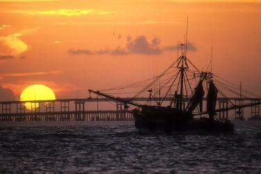 Shrimp_Boat_Larry_Ditto