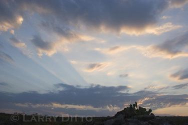 Texas_sunrise_Larry_Ditto