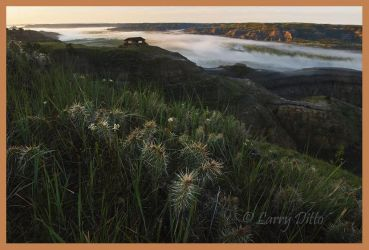 Theodore Roosevelt National Park, N.D.