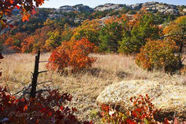 Fall Colors at Wichta Mts Natl Wildlife Refuge, Oklahoma