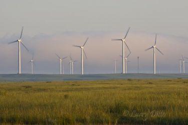 windfarm at sunrise