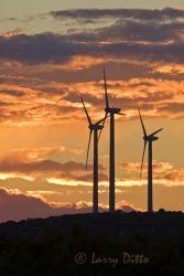Wind_Turbines_Larry_Ditto_70K7006