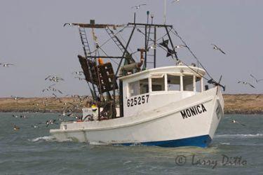 Fishing boat_mg5895