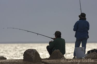 Fishing_x0z4288