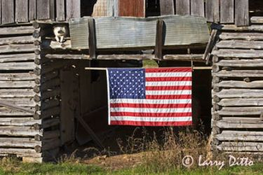 flag_and_dog_Larry_Ditto_mg3778