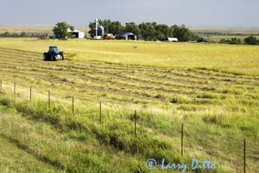 mowing_prairie_hay_Larry_Ditto