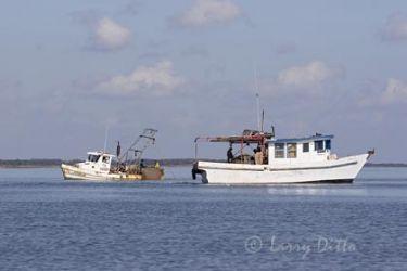 Fishing_mg4790.jpg