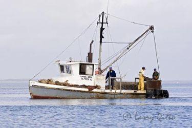 Fishing_mg4808.jpg