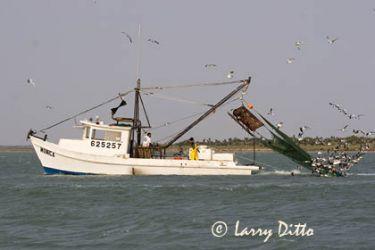 Fishing Boat_mg5878