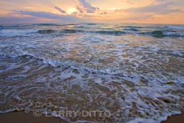 south-padre-island-beach_2_Larry_Ditto