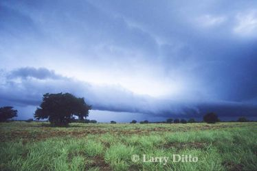 storm_cloud_2_Larry_Ditto