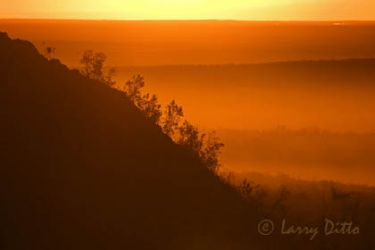 Sunrise, Texas hill country, with fog